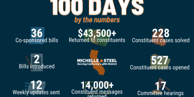 100 Days Graphic